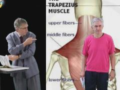Inleiding nek/schouderklachten (in Engels)