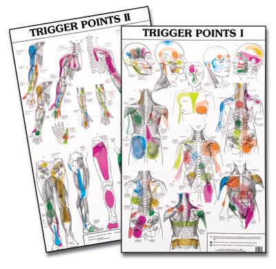Triggerpoints: pijn in spier en bindweefsel