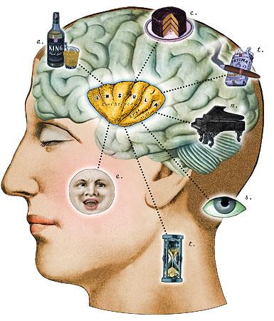 Insula en zelfbewustzijn